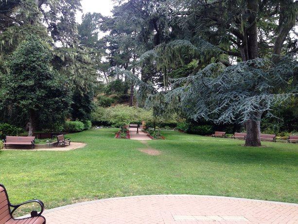 sz-aaa-s-garden-inside.jpg